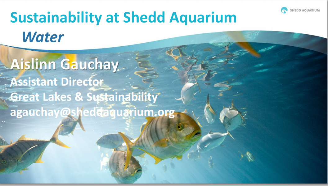Title Slide: Sustainability at Shedd Aquarium