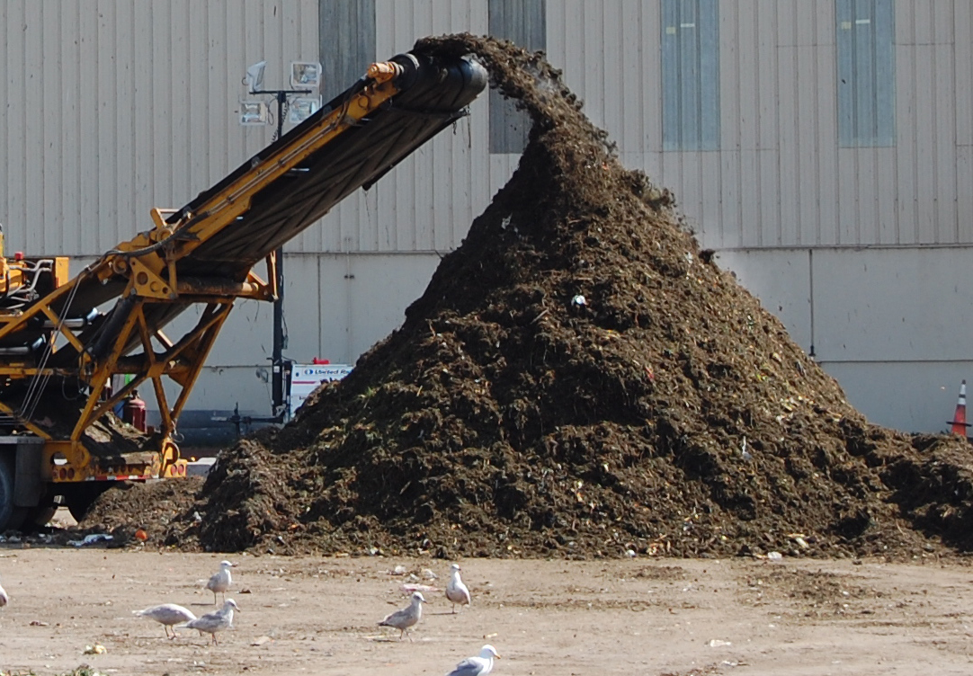 compost at a commerical compost facility