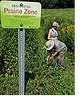 "sign with ""Prairie Zone"" in front of an estabilished prairie with two workers tending the prairie"