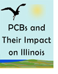 "beach graphic scene with gull and sun with the words ""PCBs and Their Impact on Illinois"""