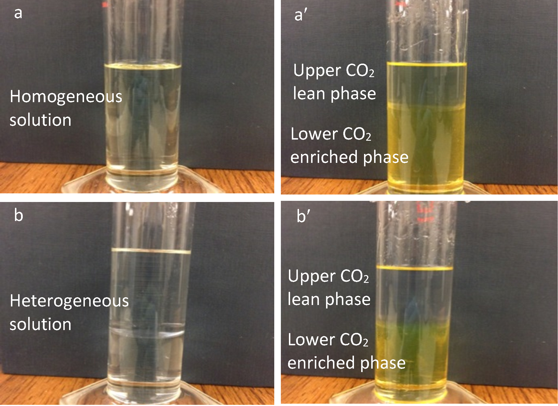 "photo a: Homogeneous solution - pale yellow liquid in a clear glass graduated cylinder. photo a prime: Upper carbon dioxide lean phase; lower carbon dioxide enriched phase - two immiscible liquids in a clear glass graduated cylinder. The upper liquid is the lean phase is clear yellow. The lower phase is CO2 enriched. The enriched phase is cloudy yellow and takes up the bottom two thirds of the liquid in the graduated cylinder.photo b: Heterogeneous solution - two immiscible liquids in a clear glass graduated cylinder. photo b prime: Upper carbon dioxide lean phase; lower carbon dioxide enriched phase - two immiscible liquids in a clear glass graduated cylinder. The upper liquid is the lean phase and is clear. The lower phase is CO2 enriched and is cloudy yellow. The enriched phase takes up the bottom half of the liquid in the graduated cylinder."" title=""photo a: Homogeneous solution - pale yellow liquid in a clear glass graduated cylinder. photo a prime: Upper carbon dioxide lean phase; lower carbon dioxide enriched phase - two immiscible liquids in a clear glass graduated cylinder. The upper liquid is the lean phase is clear yellow. The lower phase is CO2 enriched. The enriched phase is cloudy yellow and takes up the bottom two thirds of the liquid in the graduated cylinder.photo b: Heterogeneous solution - two immiscible liquids in a clear glass graduated cylinder. photo b prime: Upper carbon dioxide lean phase; lower carbon dioxide enriched phase - two immiscible liquids in a clear glass graduated cylinder. The upper liquid is the lean phase and is clear. The lower phase is CO2 enriched and is cloudy yellow. The enriched phase takes up the bottom half of the liquid in the graduated cylinder."