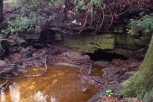 water in stream runs into cave with tree, rocks, and shrubs surrounding the cave and stream, woodland setting